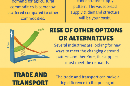 Information About Key Factors Which Affects Agricultural Commodity Prices Infographic