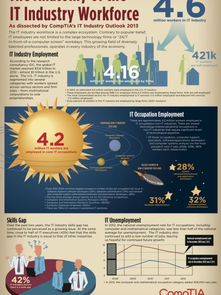 Information Technology Workforce  Infographic