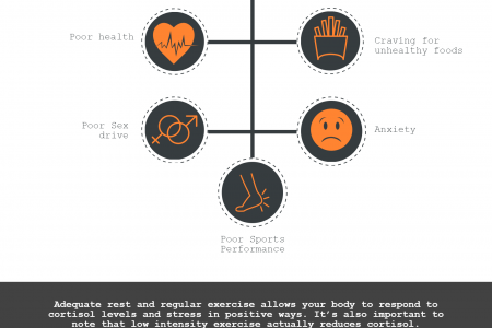 Injury Prevention with Flow – How to Reduce Excess Cortisol Infographic