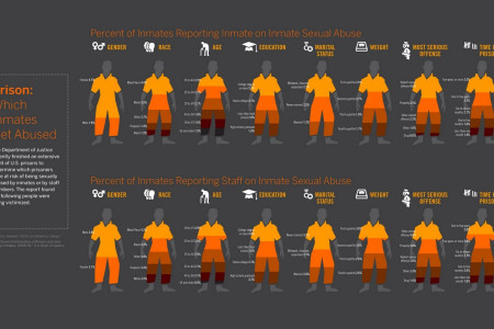 Inmates Abuse Infographics Infographic