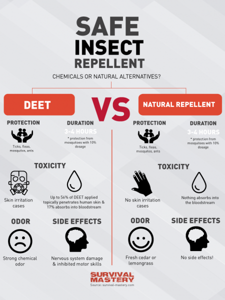Safe Insect Repellent Infographic Infographic