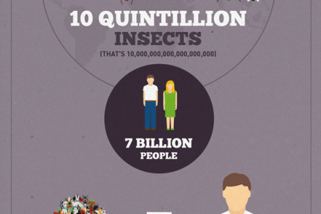 Insects In Our Food Infographic