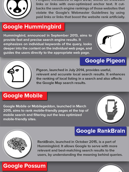 Interested To Know About Google Algorithm Updates Infographic