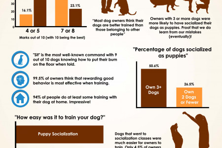 Interesting Dog Training Statistics  Infographic