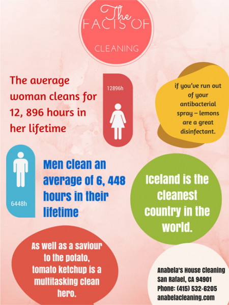 The Facts of Cleaning Infographic