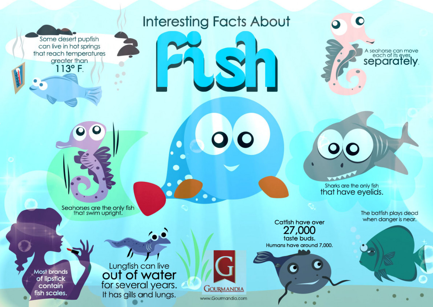 interesting facts about fish