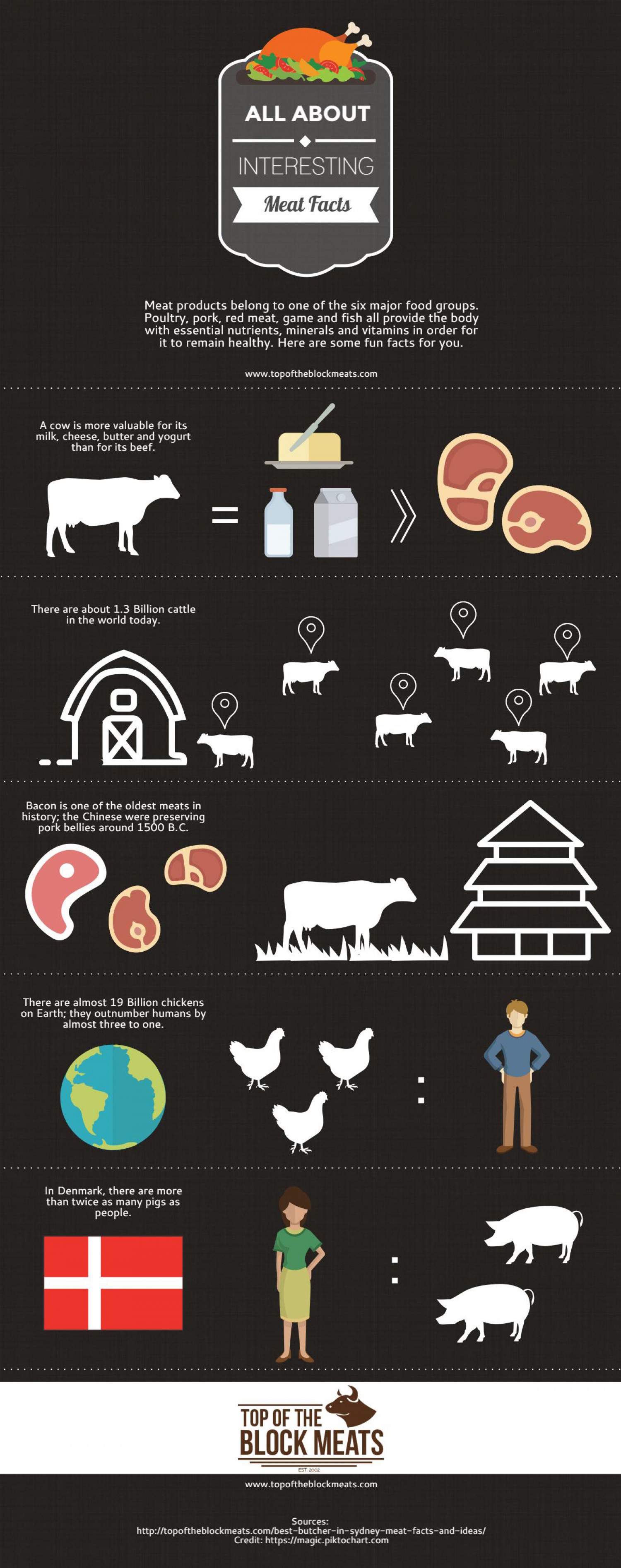 Interesting Meat Facts Infographic