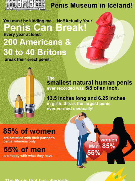 Interesting Penis Facts: Hard To Believe But True! Infographic