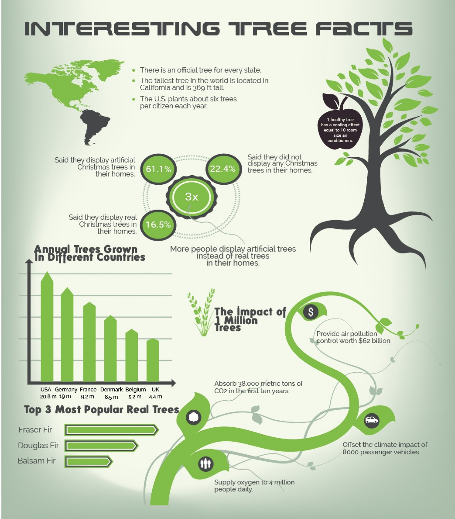Interesting Tree Facts Infographic
