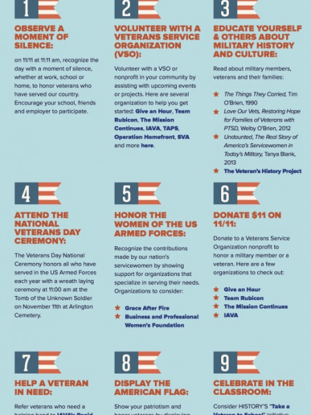 Interesting Veterans Day Facts Infographic