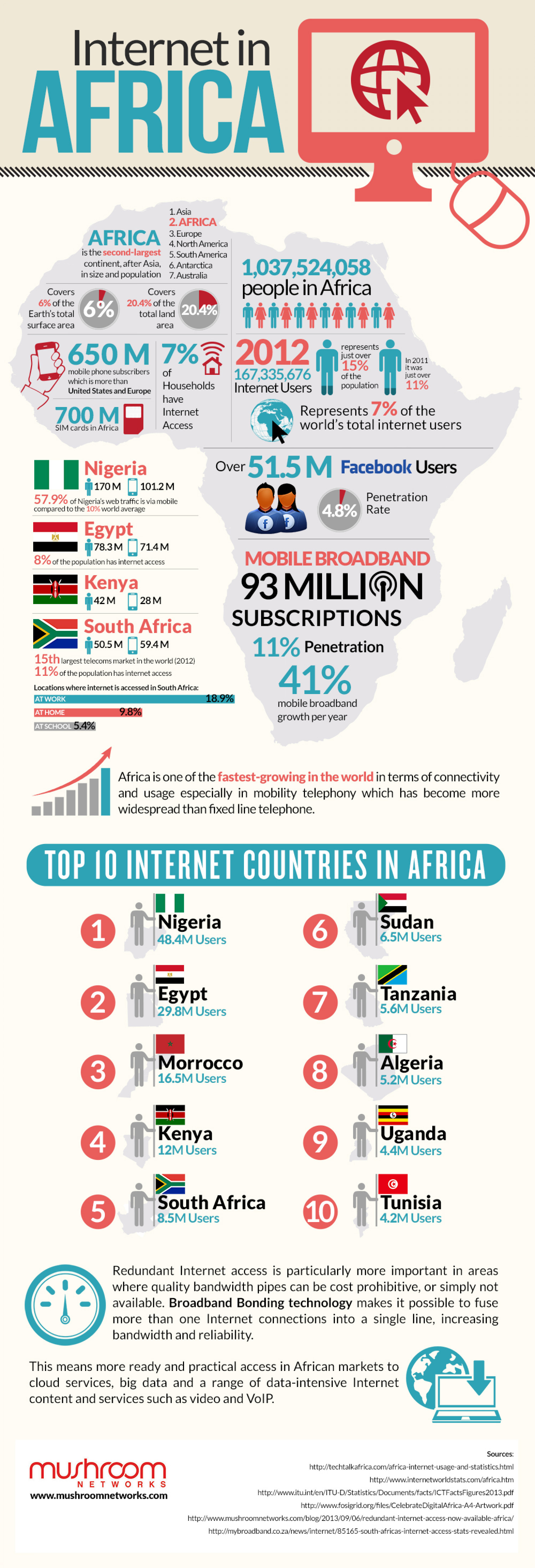 Internet In Africa Infographic