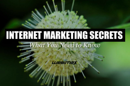 Internet Marketing Secrets: What You Need To Know Infographic