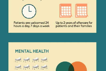 Introducing the New Tampa Community Hospital Infographic