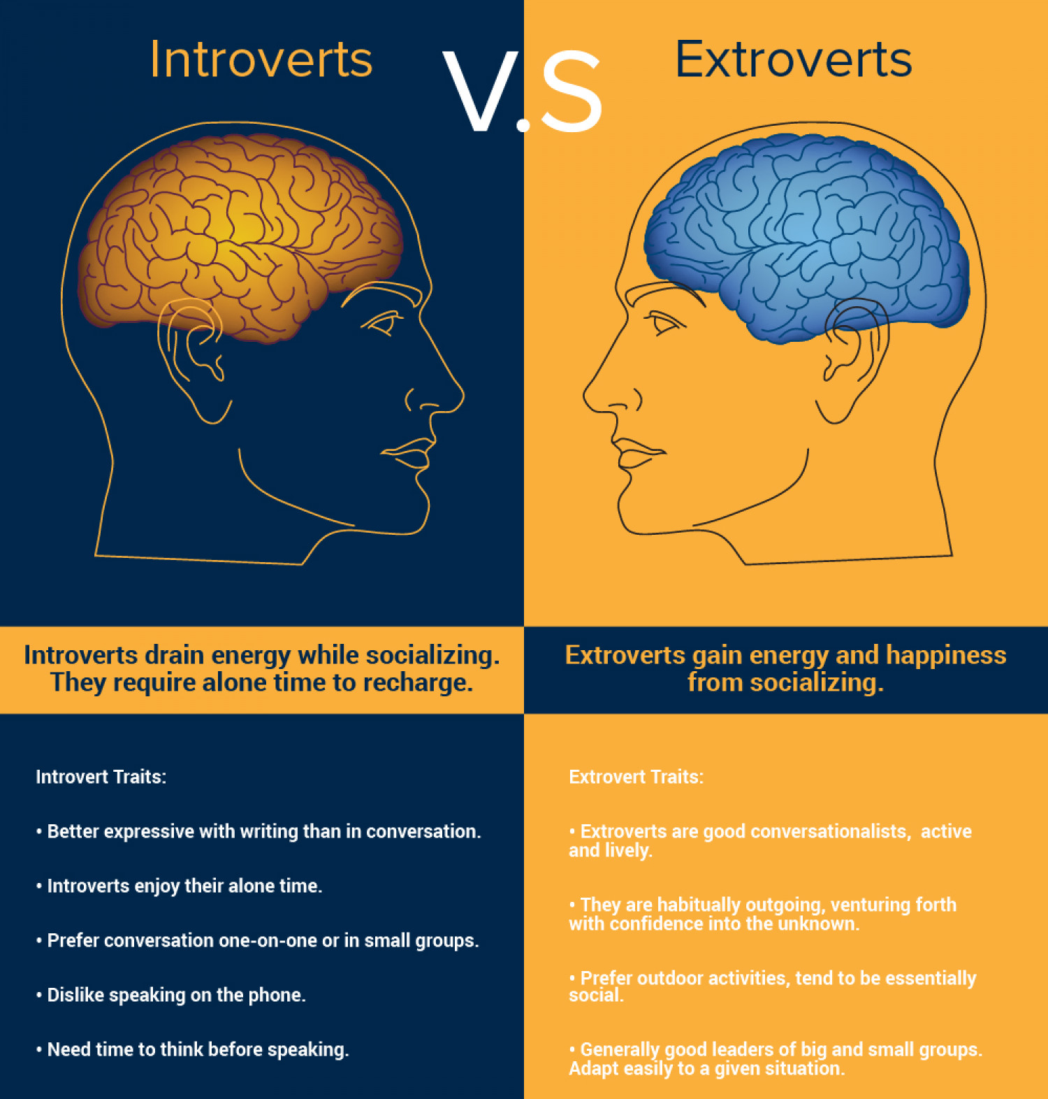 INTROVERTS VS. EXTROVERTS Infographic