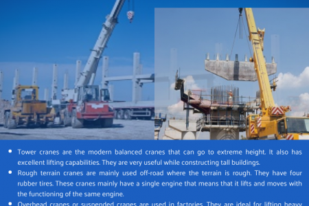 Investment in Cranes Should Be Done With Proper Homework Infographic