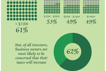 Investor Tax Concerns 2012 Infographic