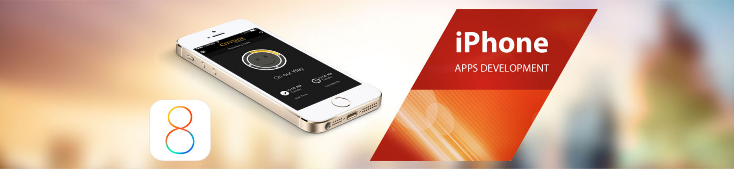 iPhone Application Development Company in India Infographic
