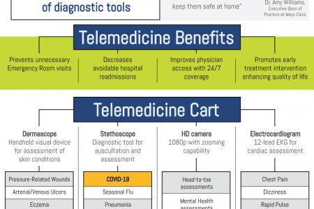 Is Remote Healthcare Here To Stay? Infographic