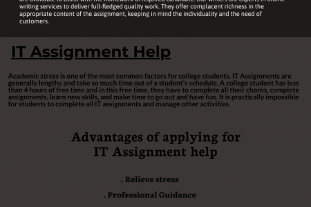 IT Assignment Infographic