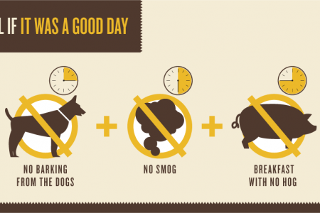 It Was A Good Day Infographic