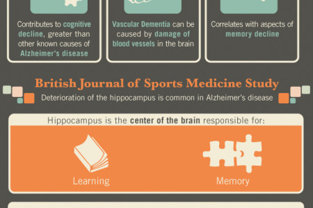 Jog Your Memory: The Effects of Exercise on the Brain Infographic