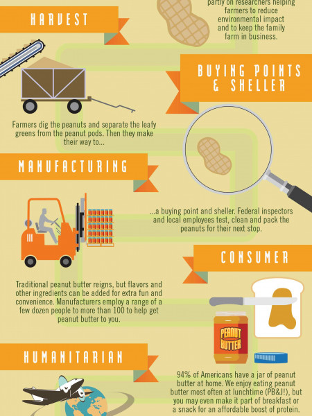 Journey of a Peanut Butter Jar Infographic