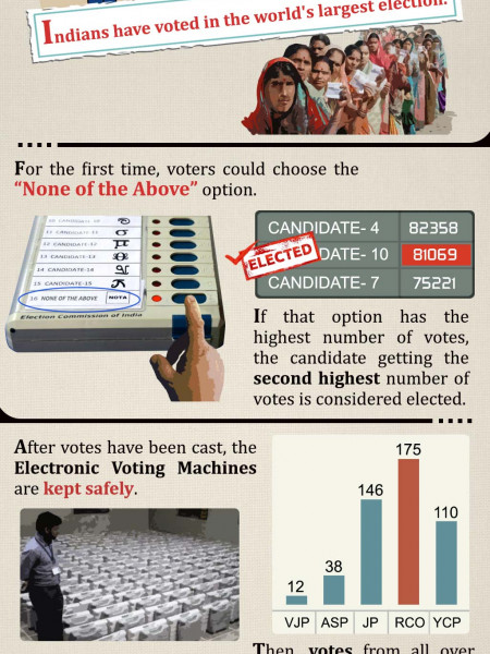 Journey of a Vote Infographic