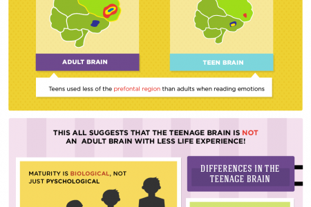 Judgment Call: Maturity, Emotions, and the Teenage Brain Infographic
