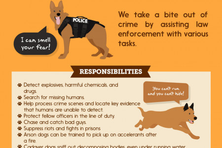 K9 to 5: A Pawsome Guide to Working Dogs!  Infographic