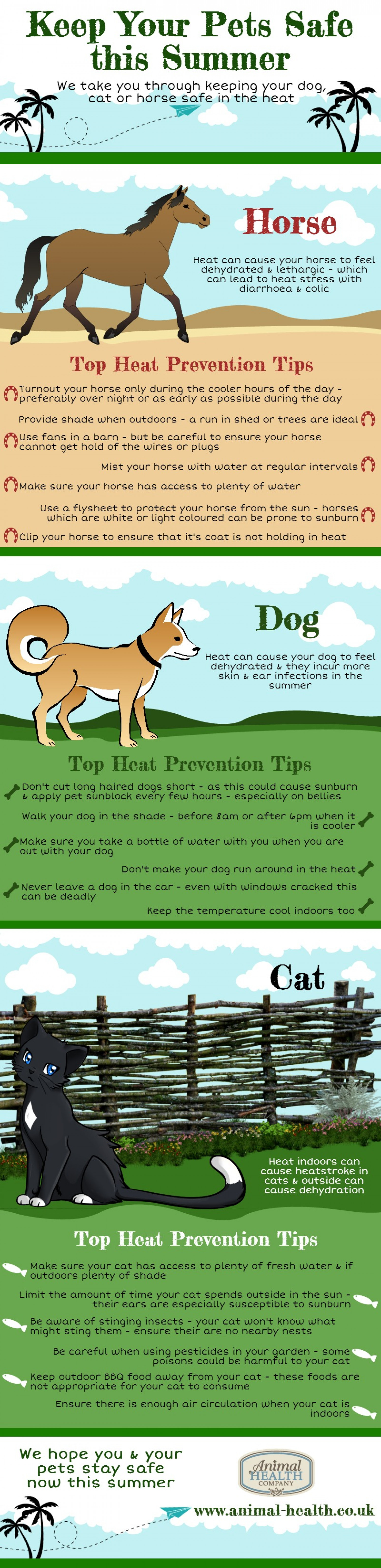 Keep Your Pets Safe this Summer Infographic