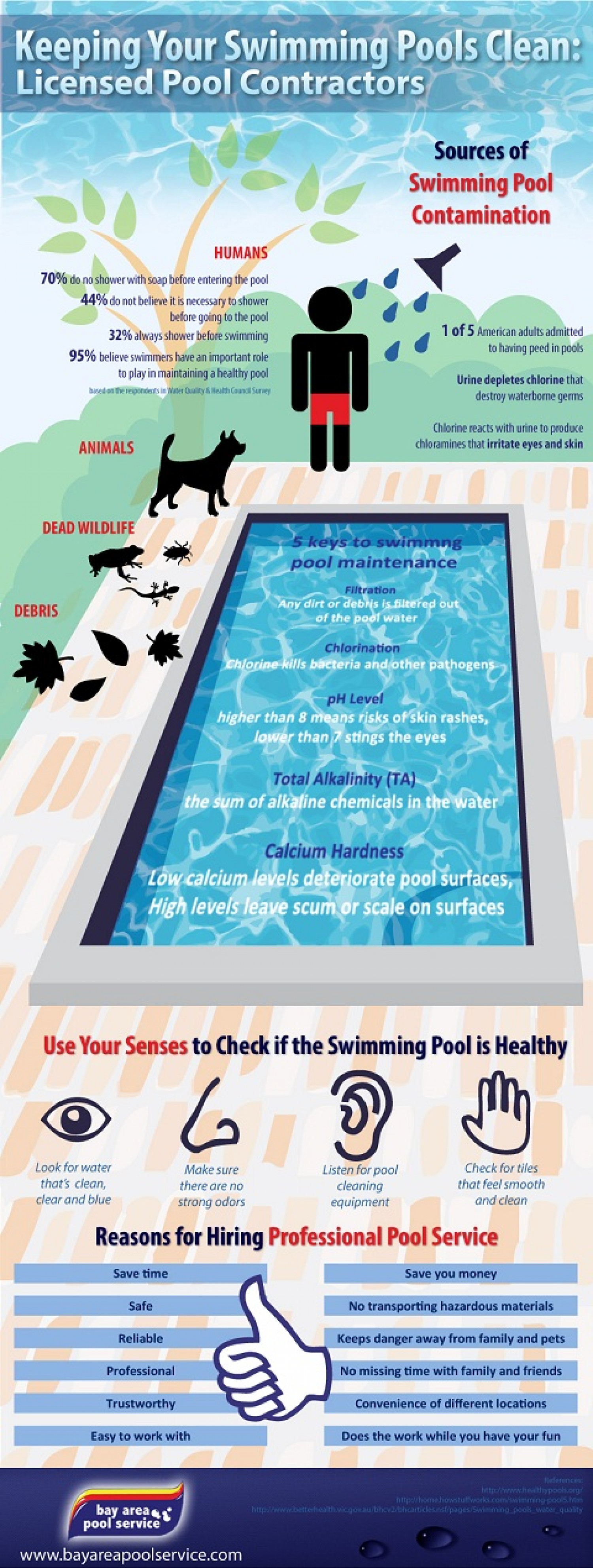 Keeping Your Swimming Pools Clean: Licensed Pool Contractors Infographic