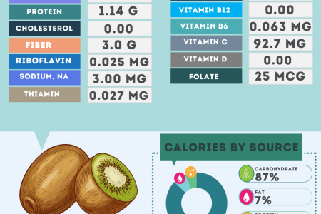 Kiwifruit nutrition facts Infographic