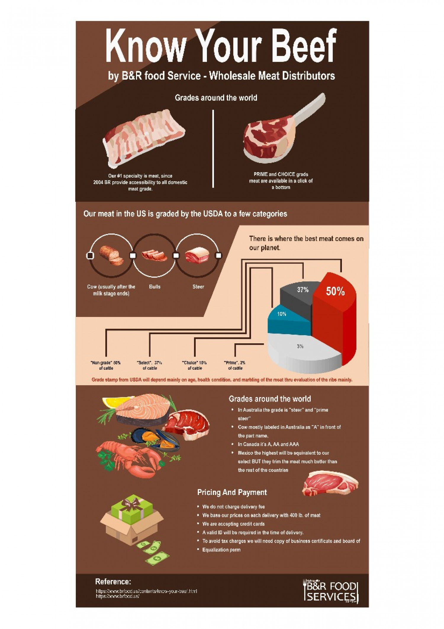 Know Your Beef by B&R food Service - Wholesale Meat Distributors Infographic