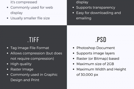 Know Your File Types : A Quick Guide On Digital File Formats Infographic