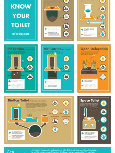Know Your Toilets Infographic
