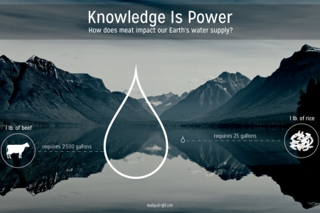 Knowledge is Power Infographic