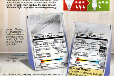 Lamps and Lighting:  Comparing Bulb Types Infographic