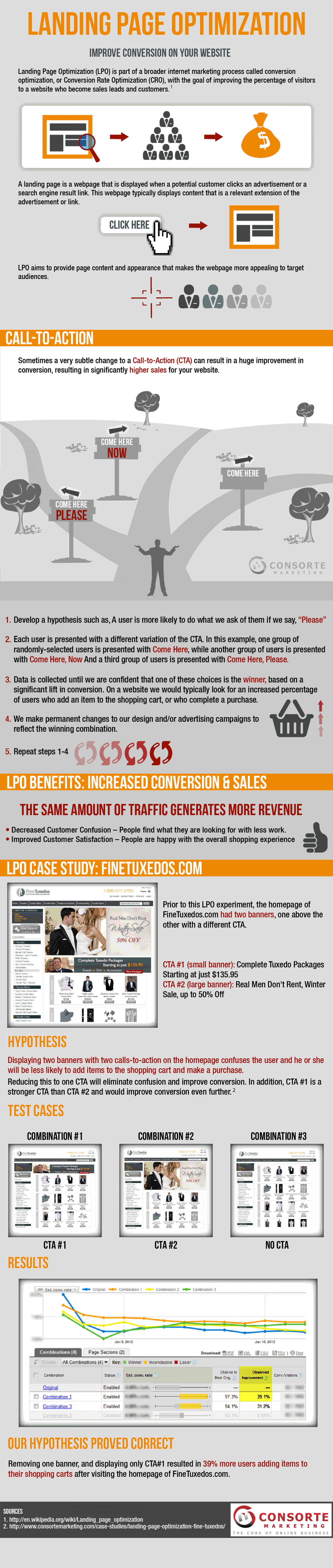 Landing Page Optimization Infographic