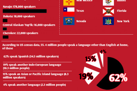 Languages of America  Infographic