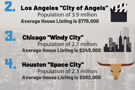 Largest US Cities Infographic