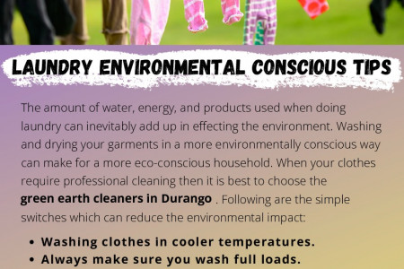 Laundry Environmental Conscious Tips Infographic
