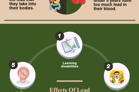 Lead Poisoning: A Brief Overview Infographic