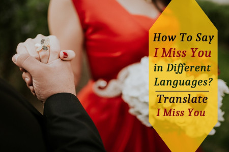 Learn Different Language to Say I Miss You via Professionals  Infographic
