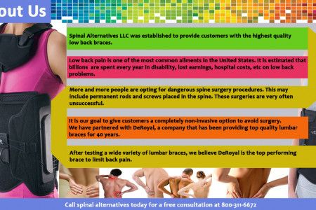 Learn More About Spinal Alternatives Infographic