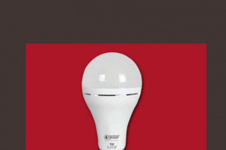 LED Bulb Manufacturers Infographic