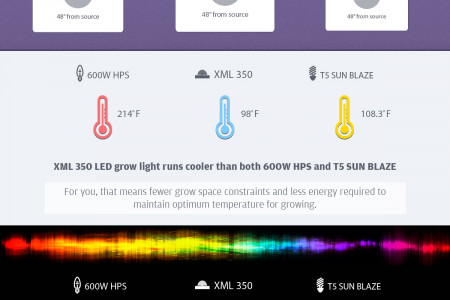 LED vs HPS vs Fluorescent Infographic