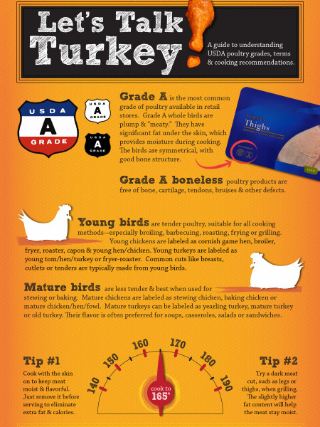 Let's Talk Turkey! Infographic