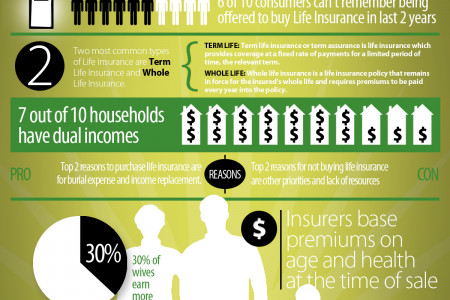 Life Insurance Infographic Infographic