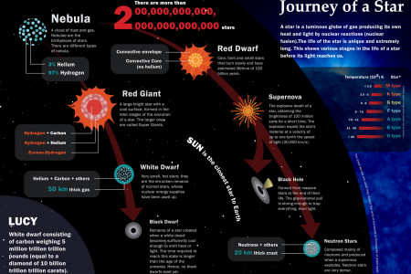 Life of a Star Infographic