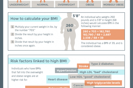 Link between BMI and your health Infographic